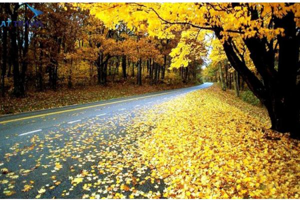 Thời tiết tháng 10 ở Nga tìm hiểu nét văn hóa đặc biệt
