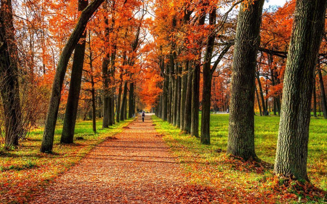 Xao xuyến mùa thu nước Nga tháng 10